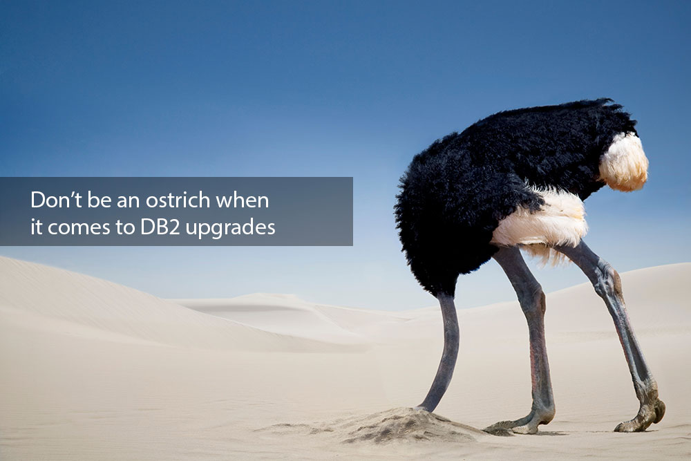 Ostrich-DB2-Upgrade